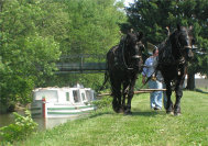 canal_fulton_tour_services003010.jpg